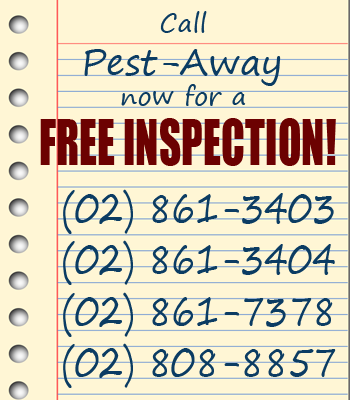 pest-away hotlines